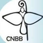 CNBB divulga nota sobre sistema carcerário do país