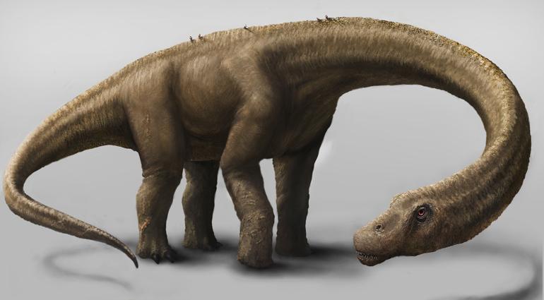 Renderização do Dreadnoughtus schrani / Carnegie Museum of Natural History