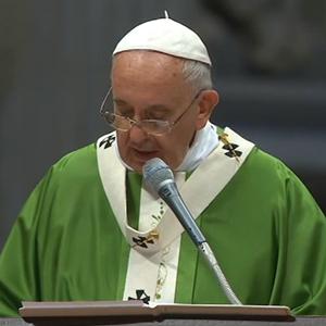 Na homilia, Papa destacou que assembleias sinodais servem para cooperar com a vinha do Senhor / Foto: Reprodução CTV