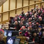 conselho do sínodo dos bispos
