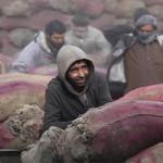 Conflitos elevam o número de refugiados em 2014: 60 milhões