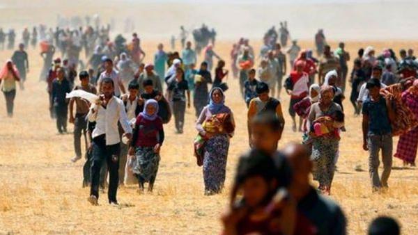 drama_refugiados
