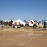 Critérios para o asilo de refugiados na Europa e no Brasil