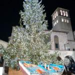 Assis: árvore de Natal e presépio dedicados às vítimas dos terremotos