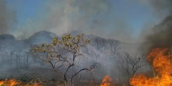 270 líderes e representantes religiosos se unem em defesa do clima./ Foto: Agência Brasil