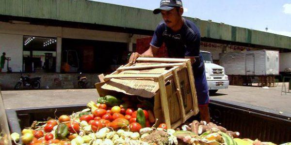 Desperdício de alimentos causa um prejuízo econômico estimado em US$ 940 bilhões por ano / Foto: Reprodução EBC