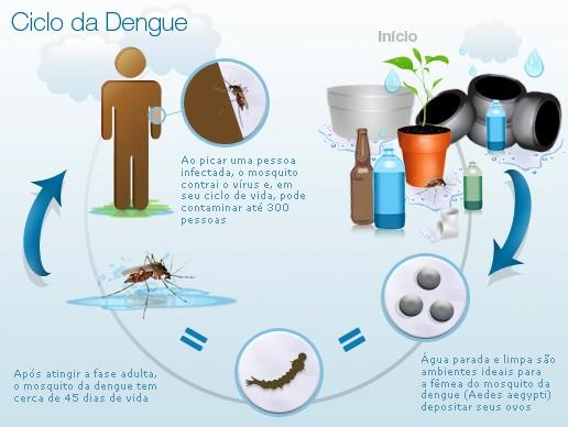 Ciclo da transmissão das doenças pelo mosquito Aedes Aegypti / Foto: MDS