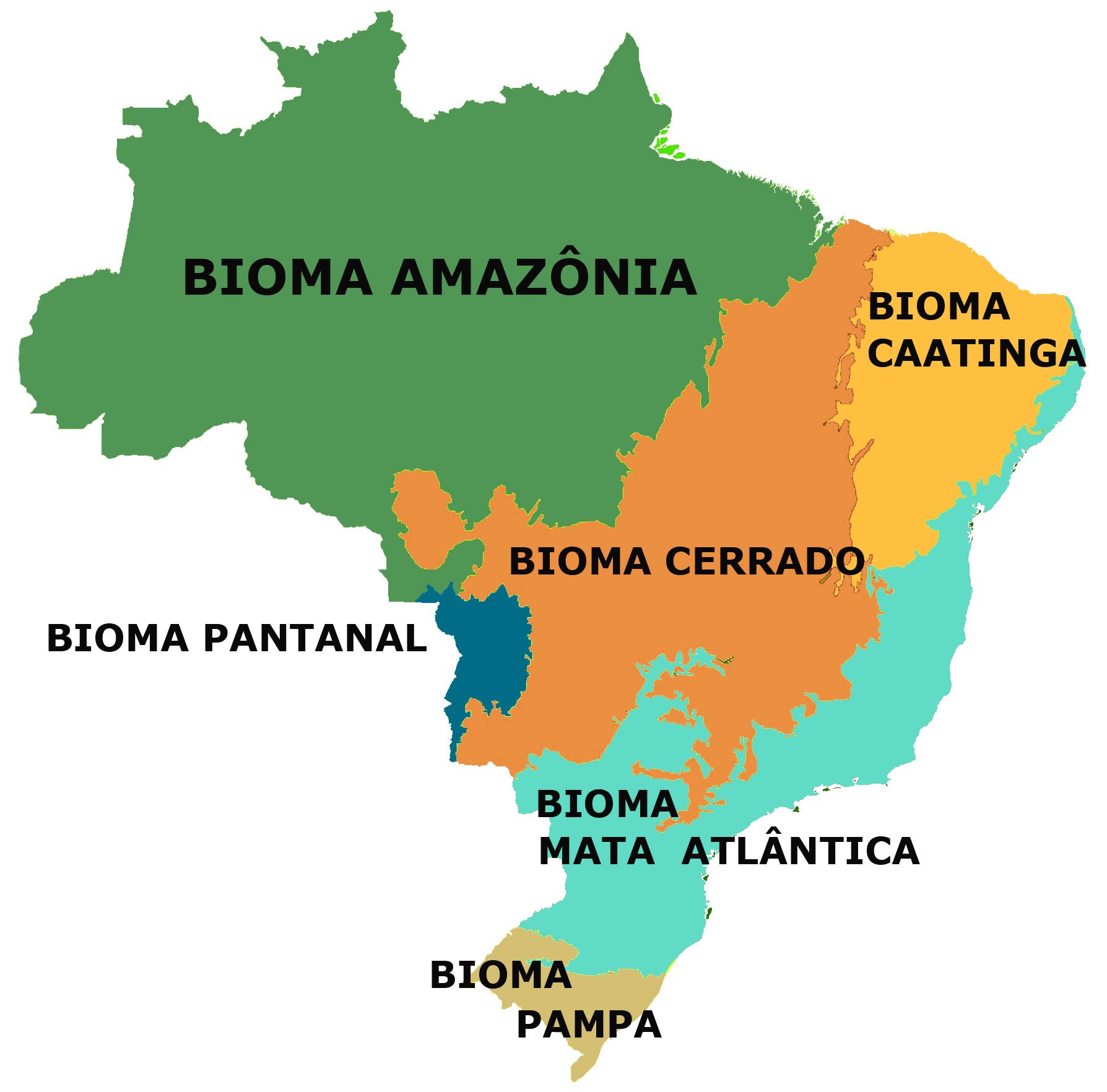 1161807794biomas_br-copia2