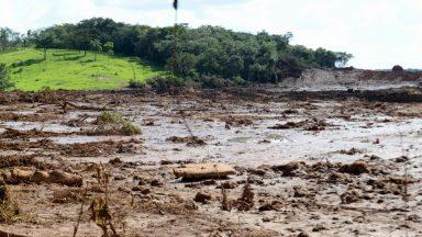 Barragem destruiu 269 hectares em Brumadinho, afirma Ibama
