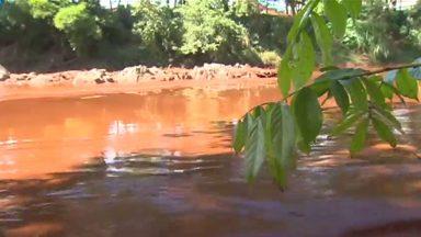 Rio Paraopeba tem níveis de metais 600 vezes maior que o permitido