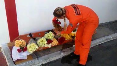 Brumadinho: em voo, bombeiros levarão flores ao local da tragédia