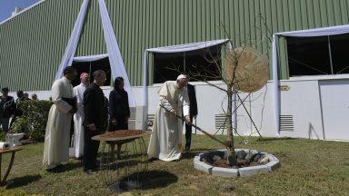 Papa e presidente malgaxe plantam árvore em recordação da visita
