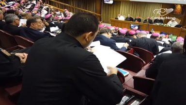 Padres sinodais propõem medidas de proteção do meio ambiente