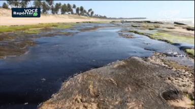 Aumentam relatos sobre danos ao meio ambiente no Nordeste