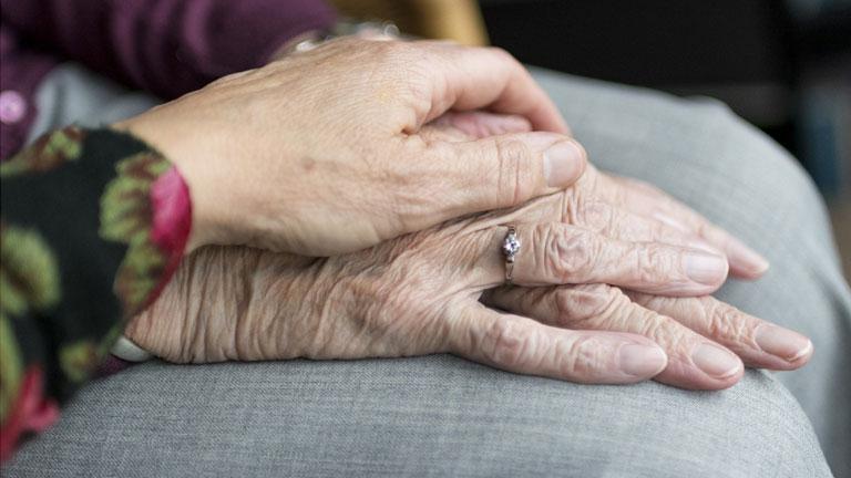dia mundial dos avós e idosos