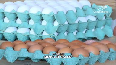 Venda de ovos bateu recorde em 2019, afirma IBGE