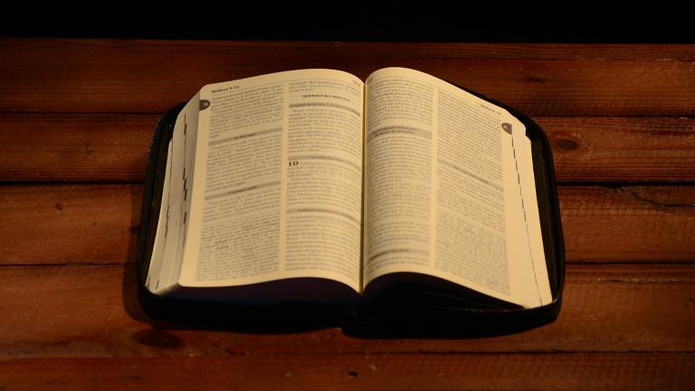 biblia paula dizaro cn Papa ganha Bíblia traduzida durante 8 anos para o dialeto piacentino