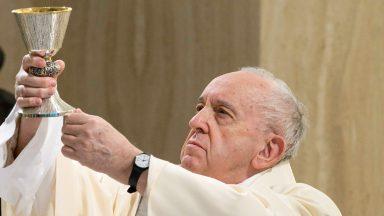Permaneçam em Jesus. Sem Ele, nada podemos fazer, afirma Papa