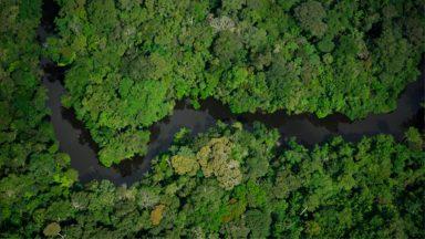 Ceama convoca 1ª Assembleia da Conferência Eclesial da Amazônia