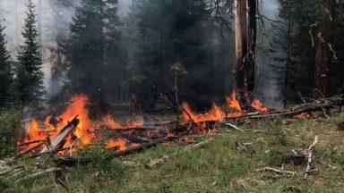Imagens de satélite mostram incêndios florestais nos Estados Unidos
