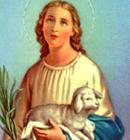 Santa Inês, modelo de pureza