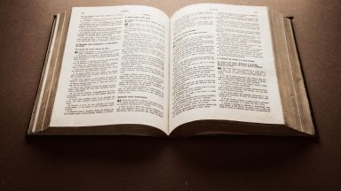 As Palavras do Senhor nos trazem a vida eterna