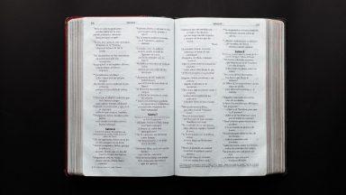 Volvámonos para Jesús en Su Palabra y en la Eucaristía
