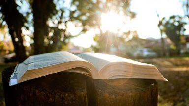 O amor é a lei mais sublime do Evangelho