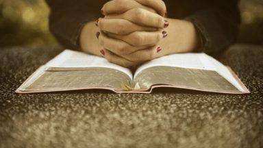 La verdadera paz viene de corazón humilde