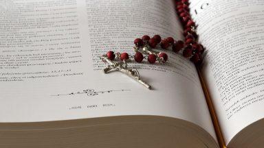 La misericordia divina transforma nuestro corazón herido