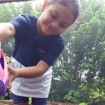 Horta Escolar- Escola cultiva vida saudável