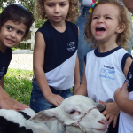 Conhecendo os animais da fazenda
