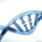 O que a Doutrina da Igreja diz sobre clonagem humana?