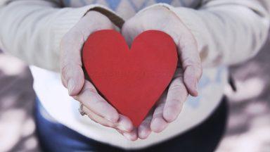 O amor é o que cura