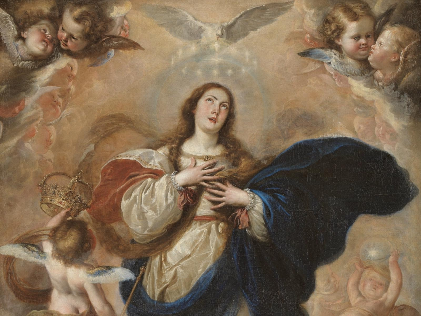 Reflita sobre o dia da Imaculada Conceição de Maria