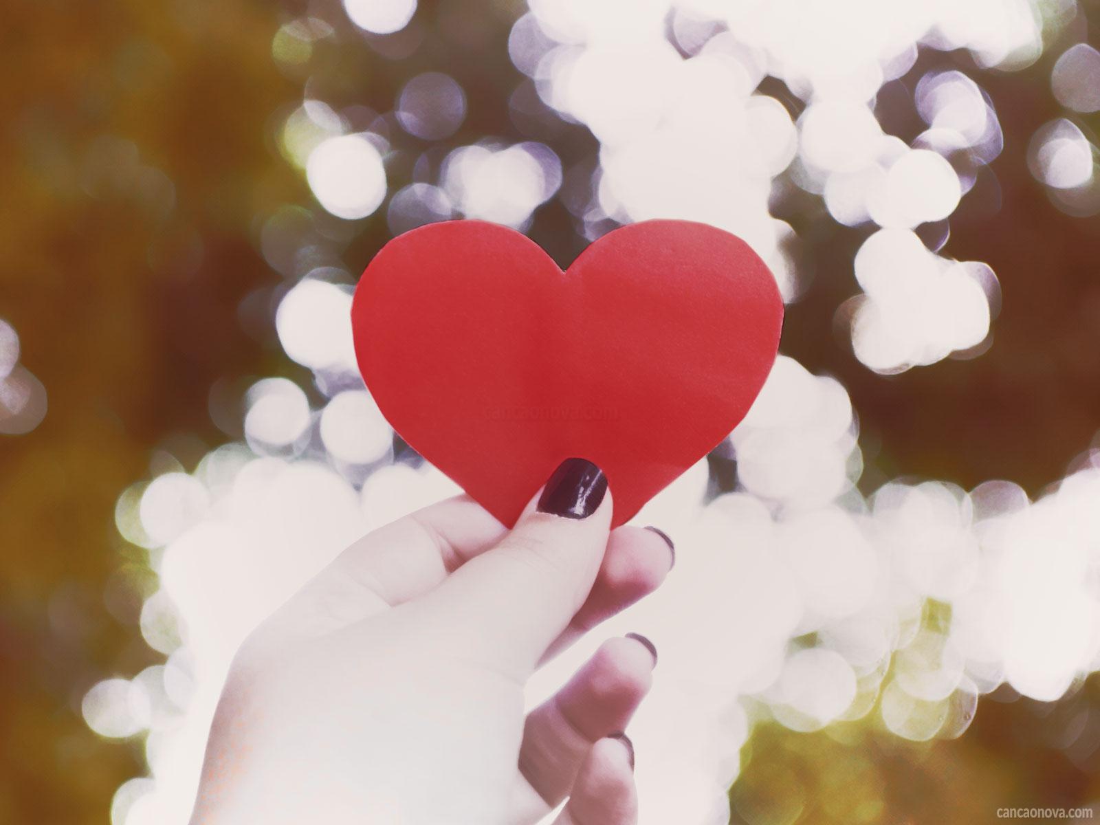 O Amor As Rosas E Os Espinhos Que Fortalecem O Perdão