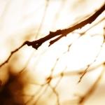 O que fazer quando temos aridez espiritual?