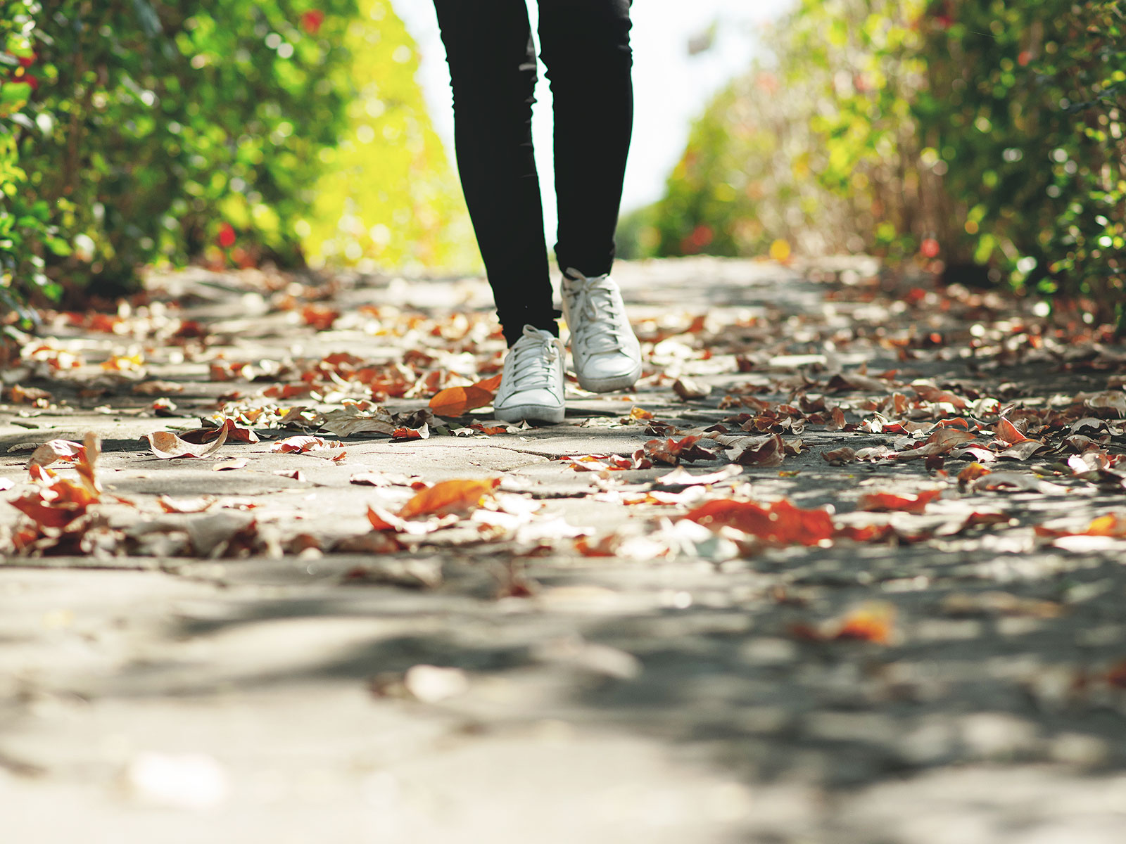 -Três-passos-para-viver-a-busca-pela-santidade