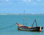 Navegar é preciso, mas para onde?
