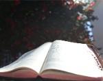 Por que ler os Evangelhos bíblicos?