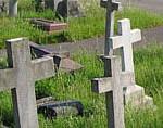 O que aprendemos com a morte?