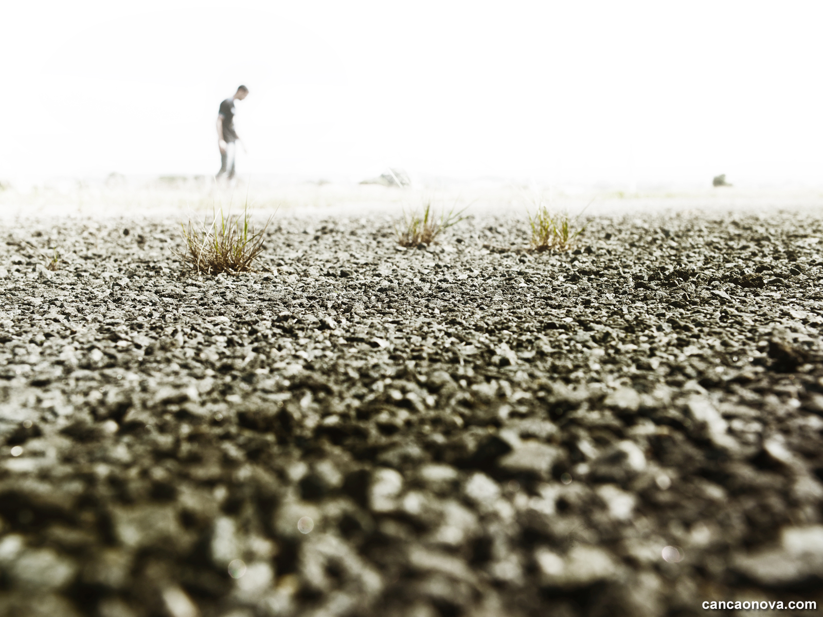 formacao_a-aridez-espiritual-pode-ser-um-trampolim-para-a-santidade 1600x1200