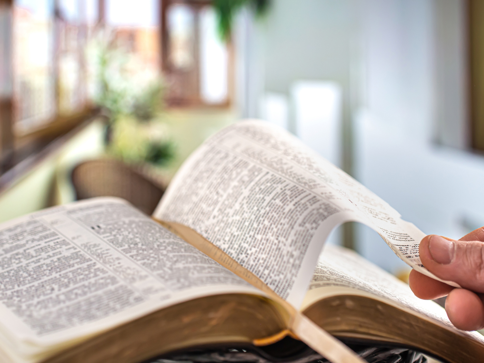 Por que dedicar o mês de setembro à Bíblia?