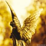 Quem é o meu anjo da guarda