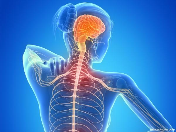 Esclerose multipla o que é e quais são os sintomas