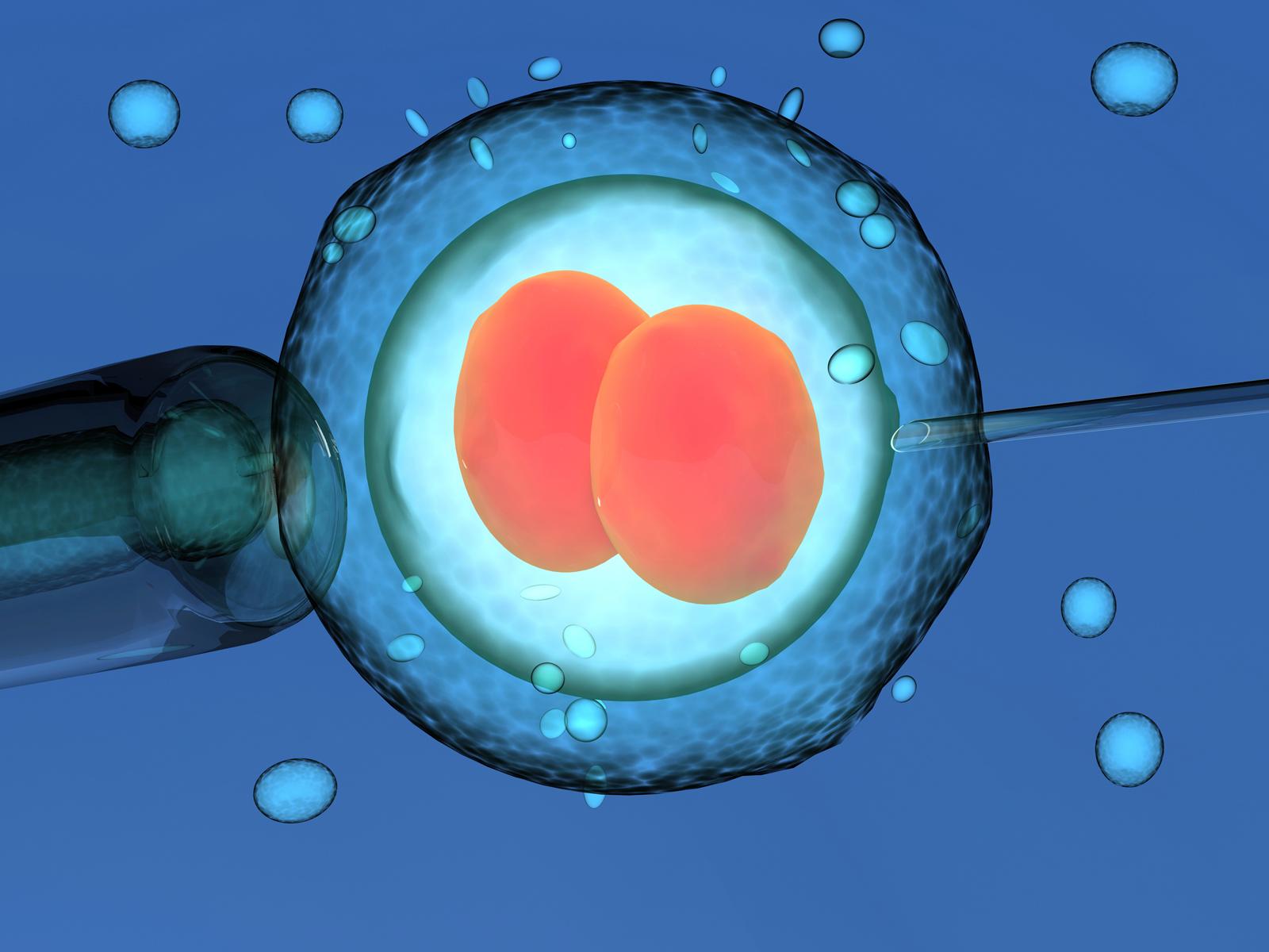 Alteração genética em embriões - 1600x1200