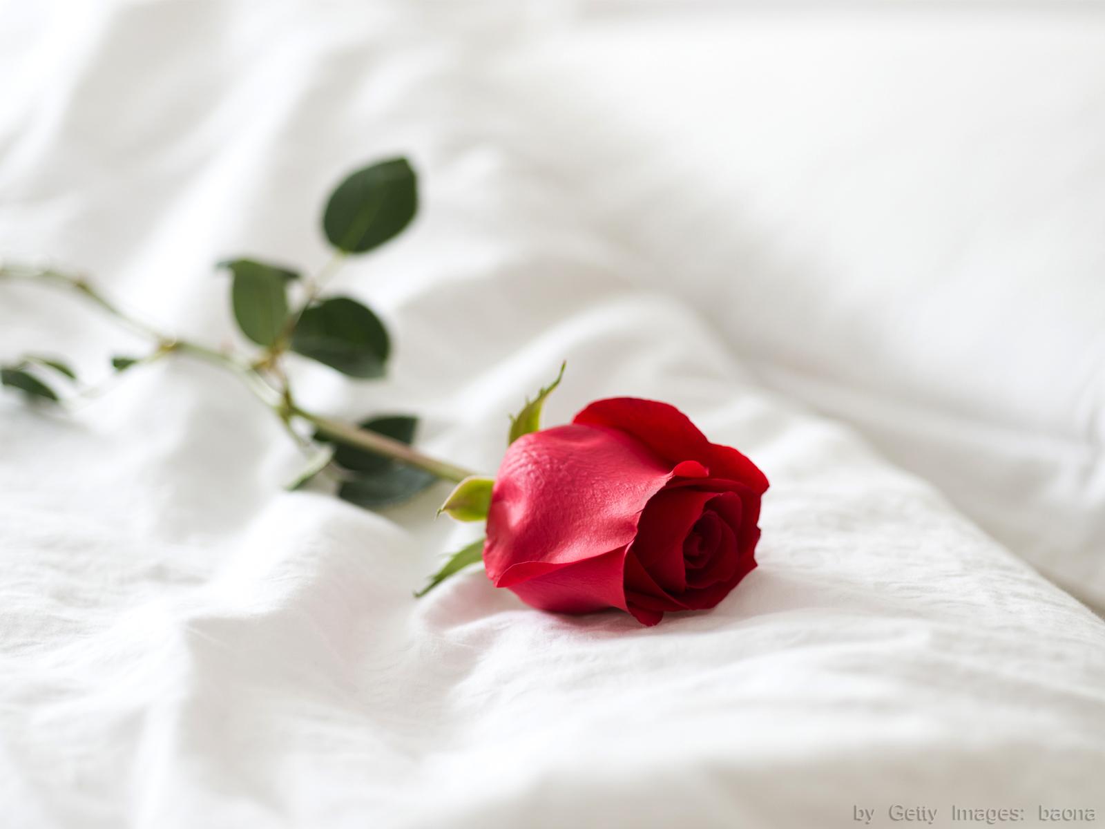 Lua de mel: momento decisivo na relação conjugal