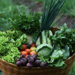 É possível ter uma alimentação saudável com pouco dinheiro?