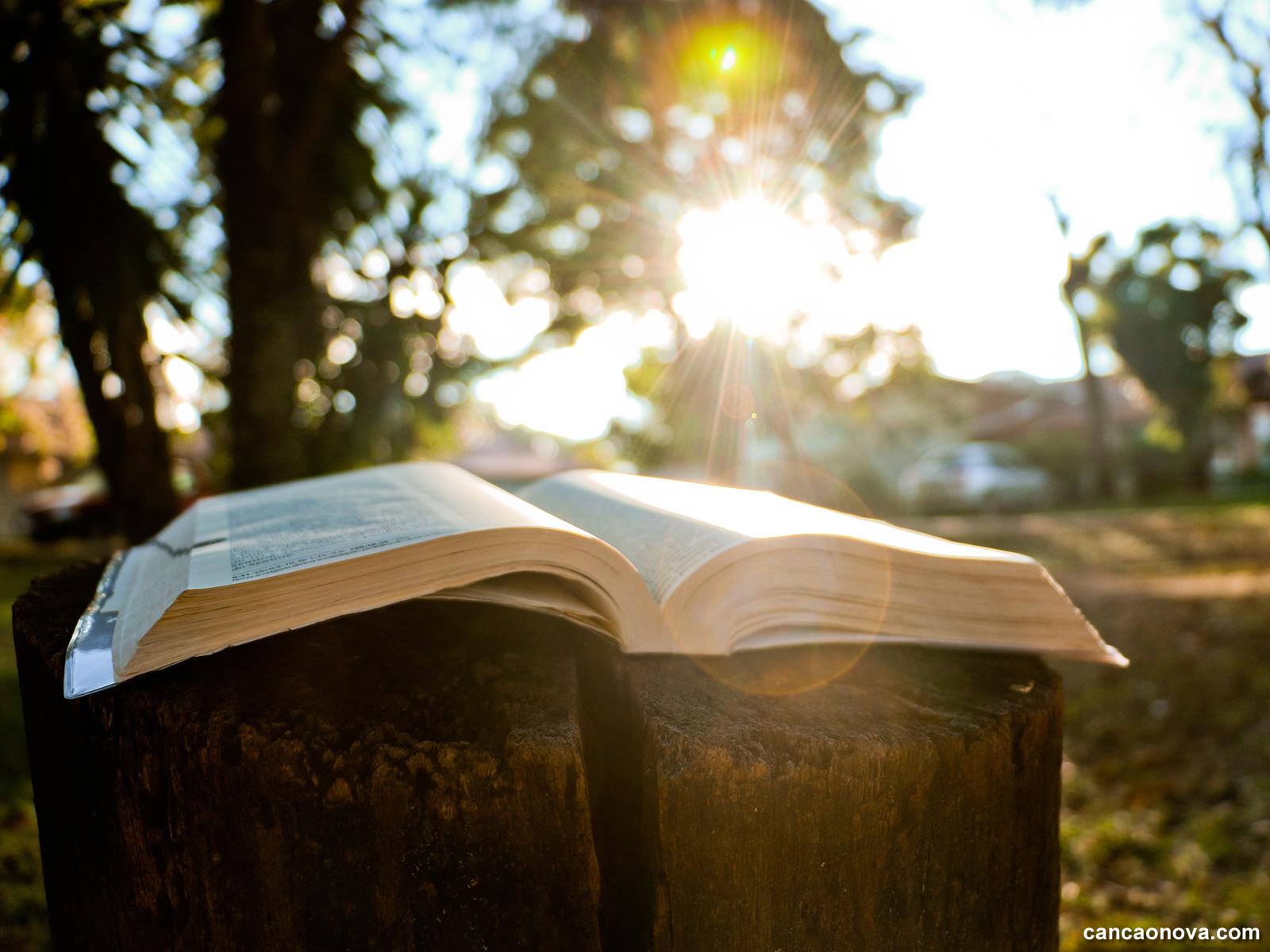 -A-riqueza-da-leitura-meditada-e-orante-da-Palavra-de-Deus-