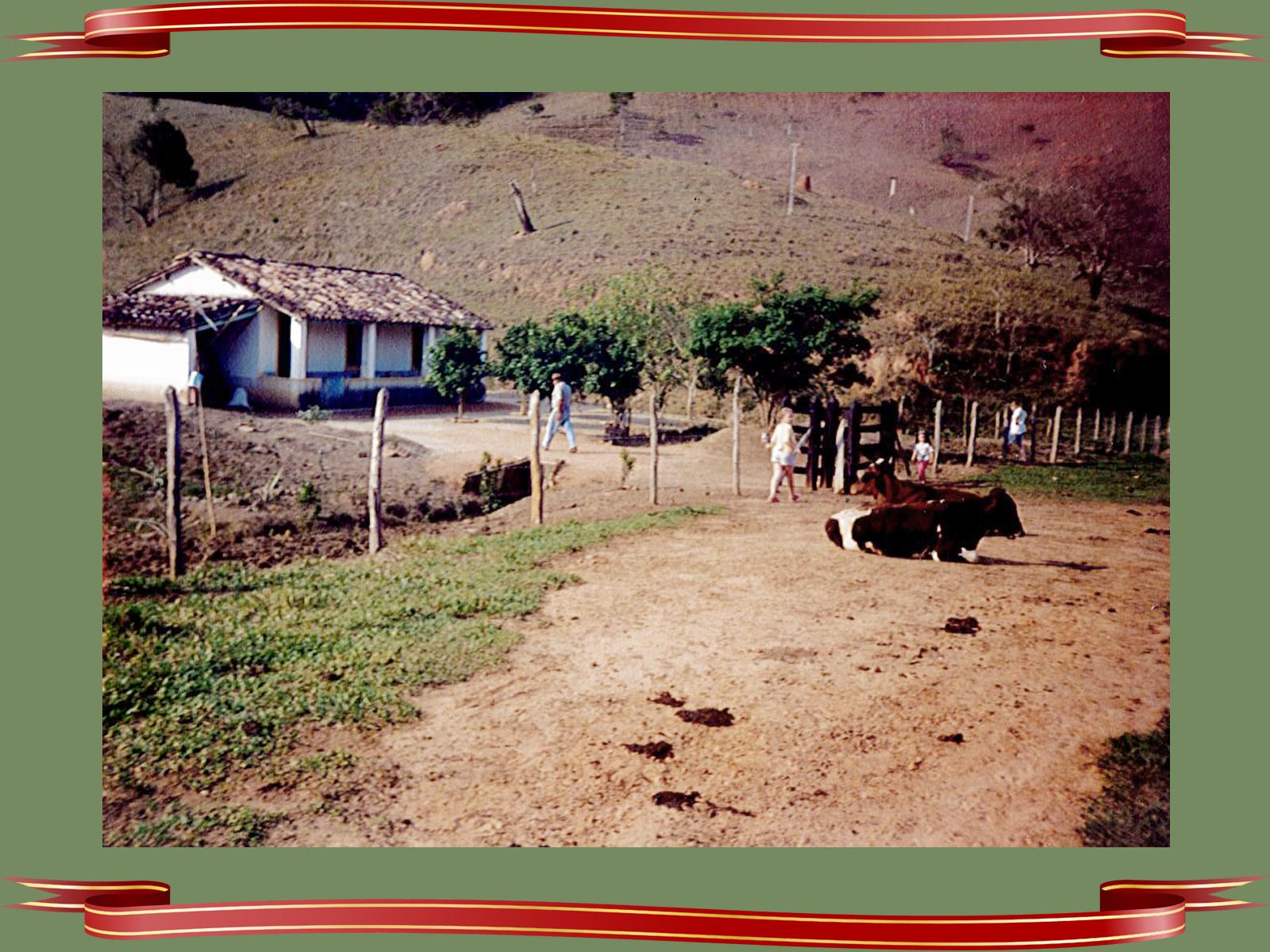 O Natal é celebrado na simplicidade e no amor entre as pessoas (5)